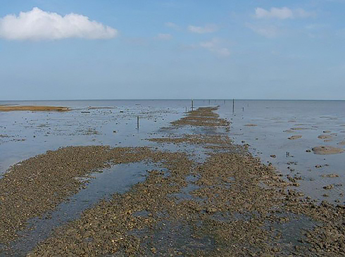 091220-The-Broomway-1